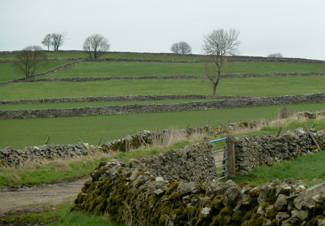 Fields across Water Lane