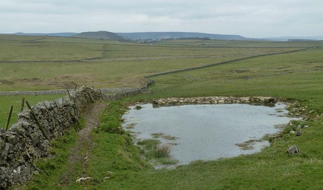 Dewpond, Old Moor