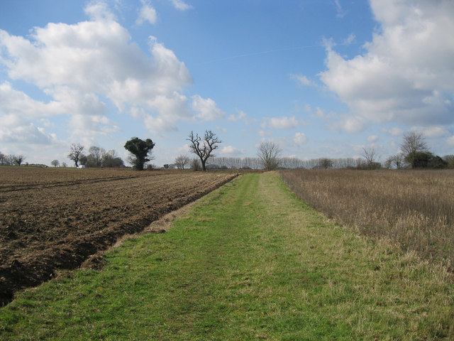 Footpath to Holt Road