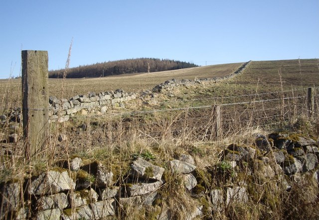 Dry stone wall field boundary