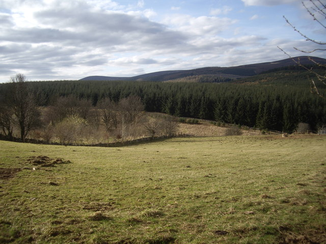 A field below Hill of Bandodle