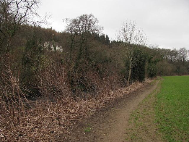 Rhymney River Circular Walk near Draethen