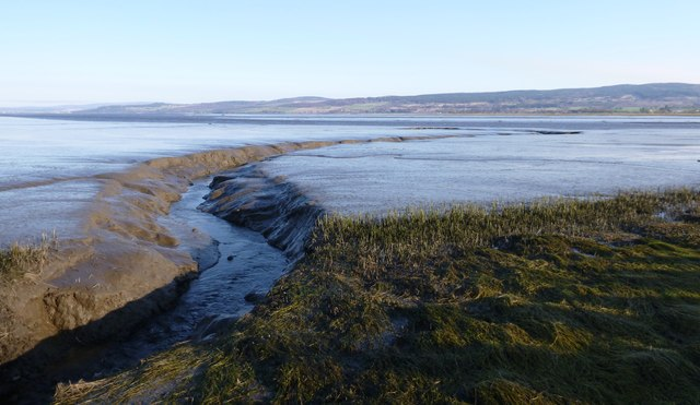 Stream flowing through the mudflats