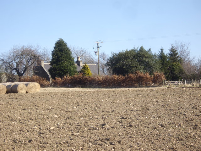 Woodhead farm