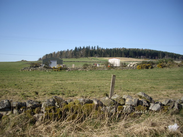 View towards Tillybirloch Wood