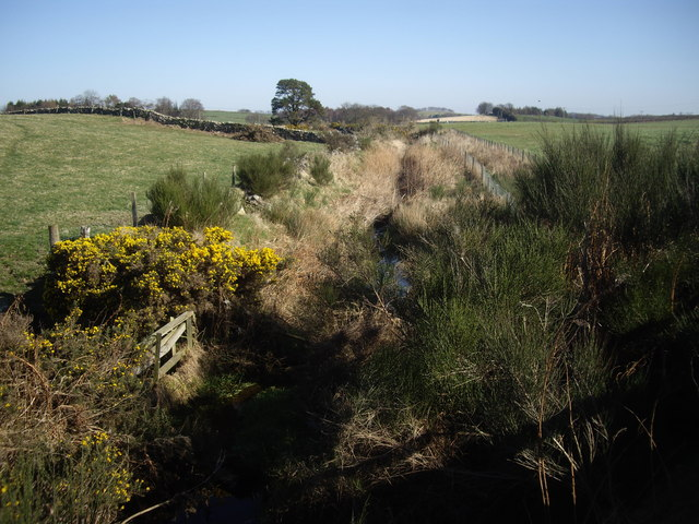 Downstream Bethlin Burn