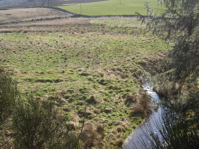 Upstream Auchorie Burn