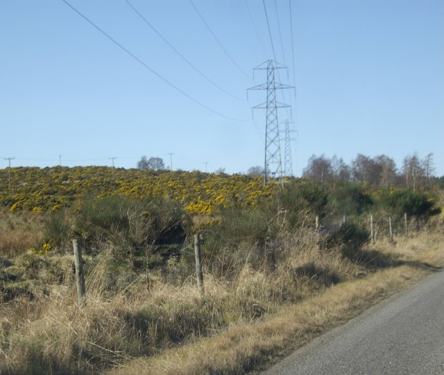 Powerlines on the south side of the B9119