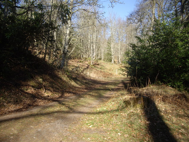 A track on the Learney Estate