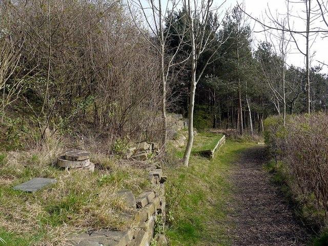 Benwell Nature Park