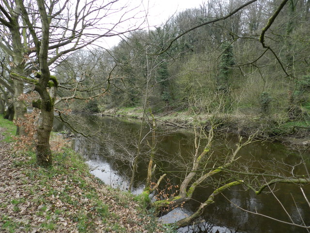 River Goyt near Lower Dale Farm