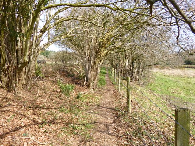 Stuckton, footpath