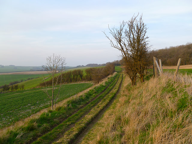 Track and farmland, Baydon