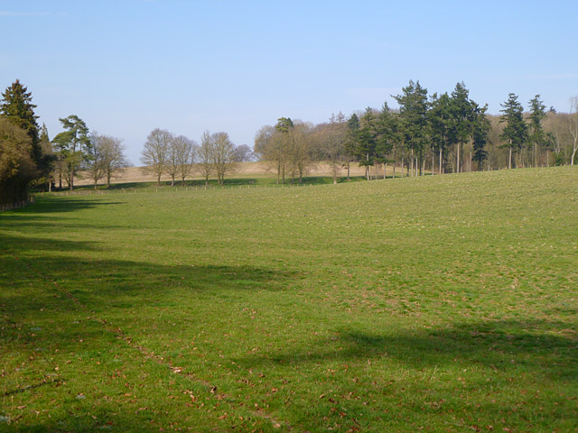 Farmland, Lambourn