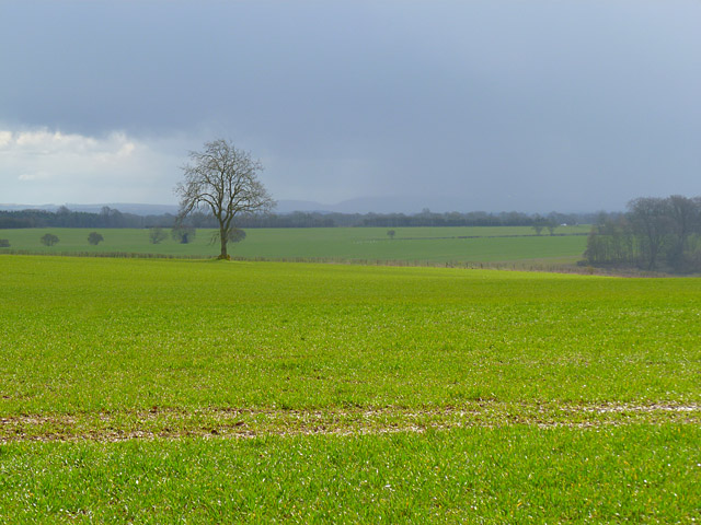 Farmland, Great Shefford