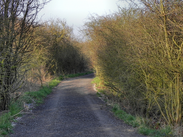 Course of Disused Railway