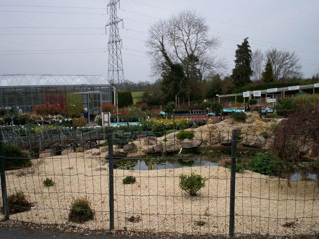 Garden Centre: Mahon Garden Centre © P Flannagan :: Geograph Britain And