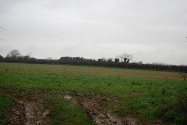 Farmland by Bonscombe Lane