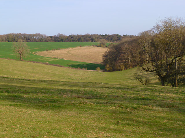 Farmland, Aldbourne