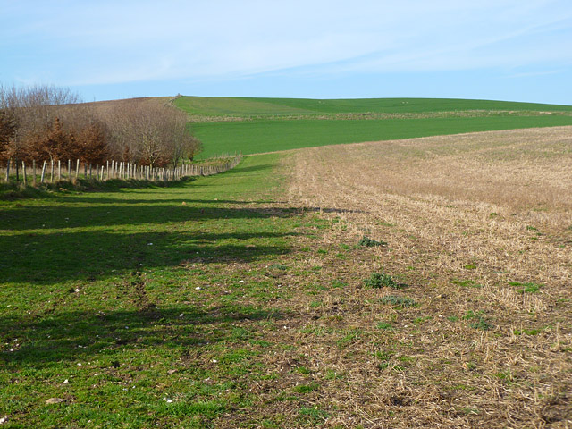 Farmland, Ashbury