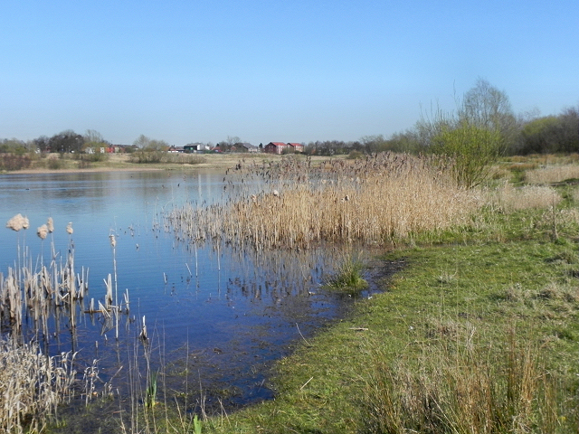Higher Hall Lake, Bickershaw