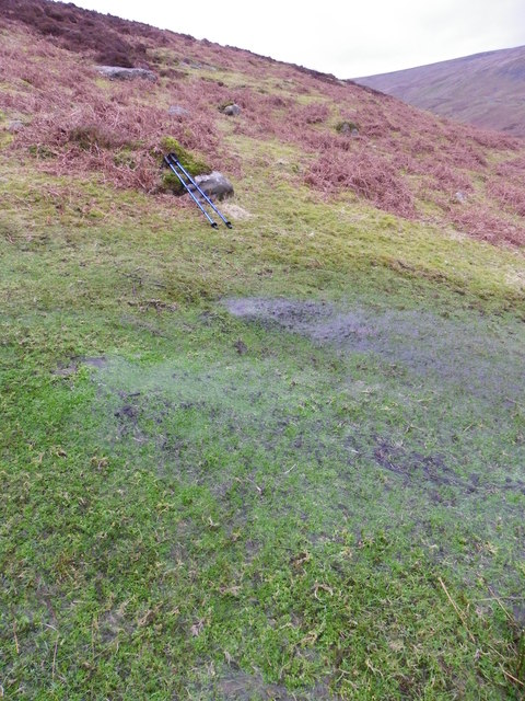 Cold Well Spring issues forth - Bowland