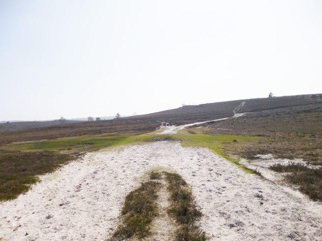 Ogdens, track junction