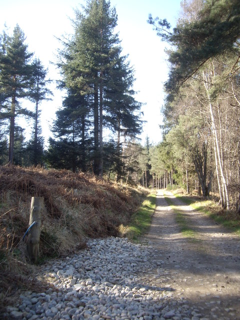 Access lane to Balnacraig House