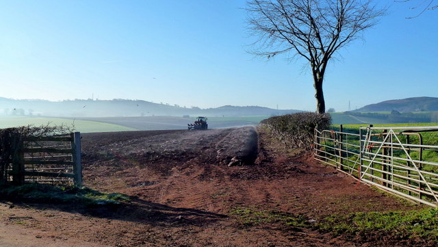 Early morning ploughing 1