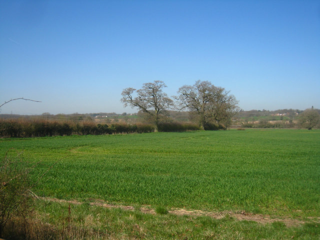 Farmland north of Mortimer Lane