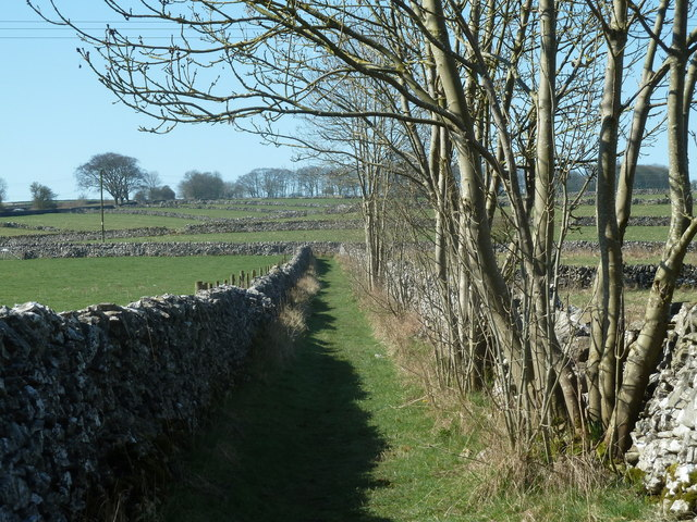 Walled track near Monyash