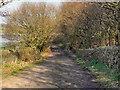 SD6610 : Hi Rid Lane by David Dixon