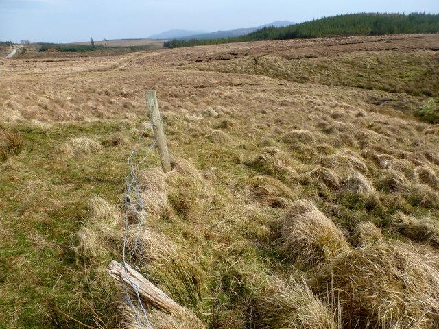 Rough ground near Tullykonwar