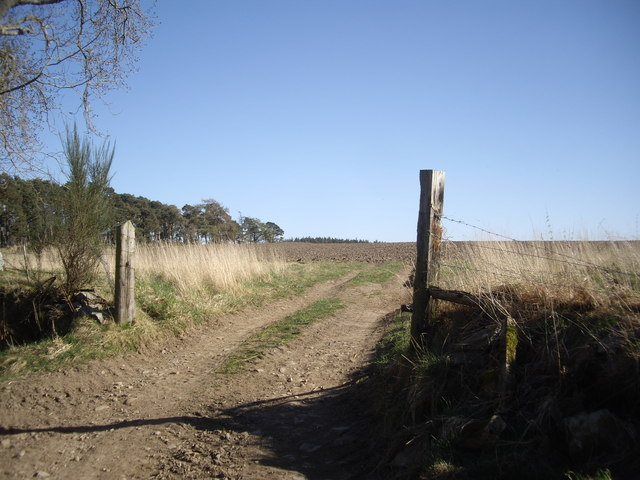 A ploughed field by Bandory Wood