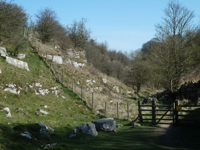 Lathkill Dale view