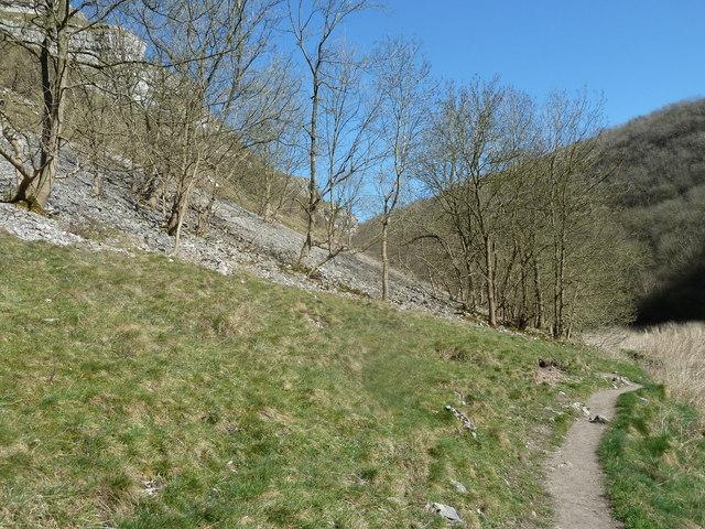 Valley scene, Lathkill Dale