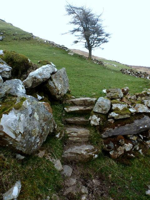 Steps to Nacroaghy field