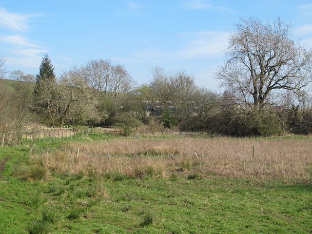 Field south of Castle Hill