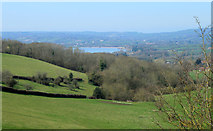 ST5958 : 2012 : Down Barelegs Brake to the Chew Valley Lake by Maurice Pullin