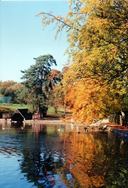Lickey Hills, Autumn Colours 1993