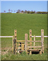 ST0274 : Double Stile and Footbridge by Guy Butler-Madden