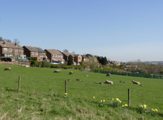 Spring comes to Loxley