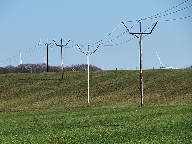 Electricity poles near Watsonhead farm