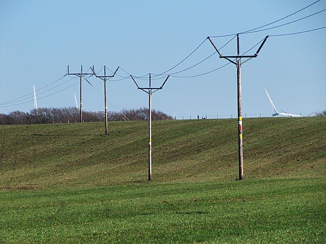 Electricity poles near Watsonhead farm