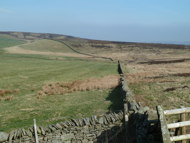 Expanse of moorland at the head of Over Dale