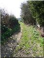TL0618 : Tipple Hill Lane by Rob Farrow