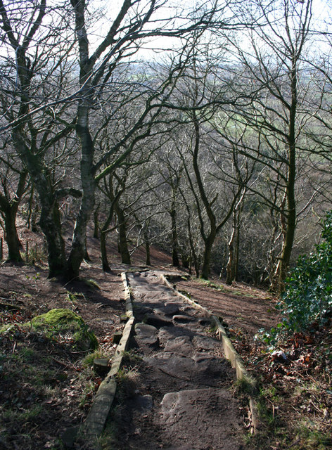Steps on the Sandstone Trail