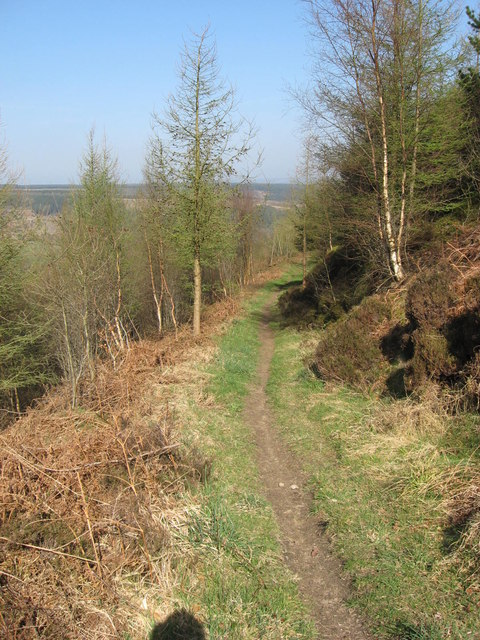 Bridleway near Jerry Noddle