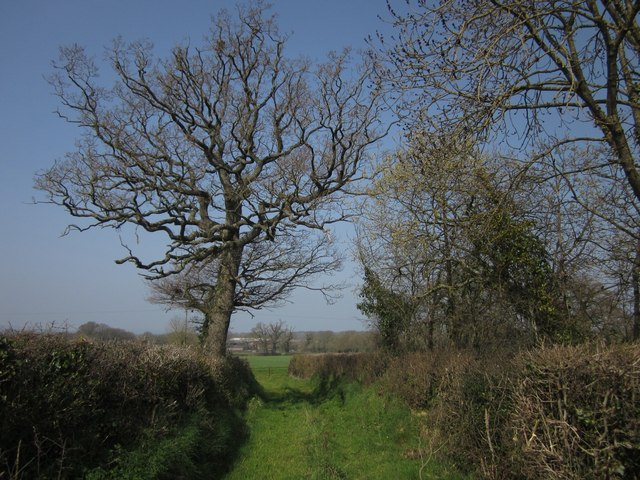 Field access track, Woodbeare