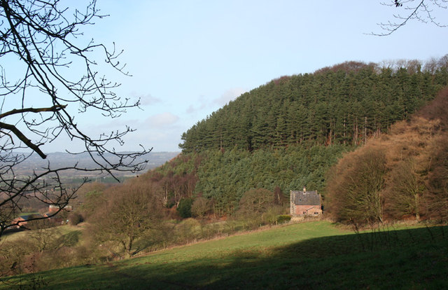 View towards Mickerdale Cottage
